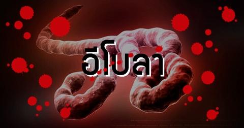 คลินิกนริทร์-พิลัมภา ความงามเหนือระดับที่ใครก็สั่งได้ ข่าว อีโบลาไวรัส...ไวรัสอันตรายที่ควรรู้